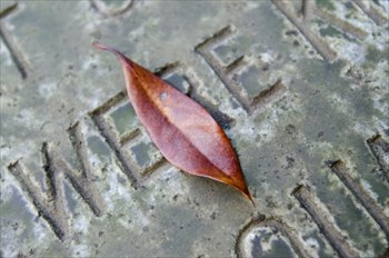 刻印にこだわるならデザイン墓石!~洋墓の相場が知りたい方はお問い合わせを~